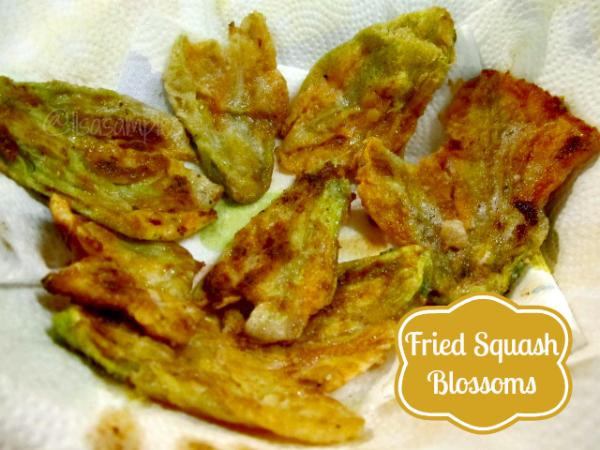 Fried Squash Blossom Flowers Final