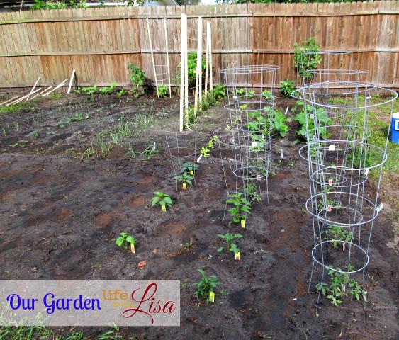 Garden 041713