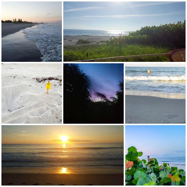 Tuckaway Shores Scenic Collage