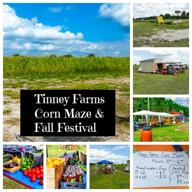 Corn Maze and Fall Festival #FallFun31