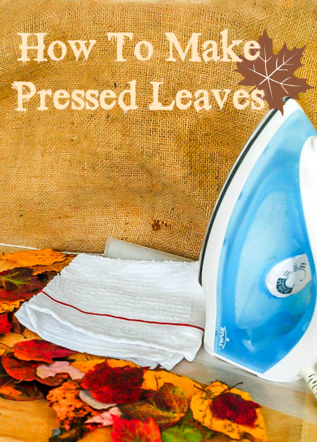 How to make Pressed Leaves #FallFun31