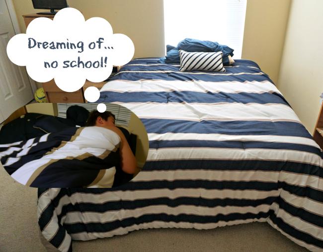 Dreaming of no school