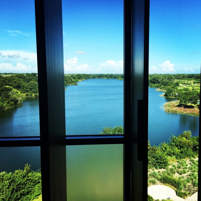 view from our room streamsong