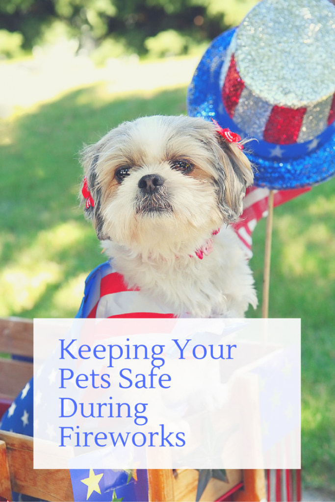 Keeping Your Pets Safe During Fireworks