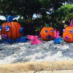 SeaWorld's Halloween Spooktacular is Back!