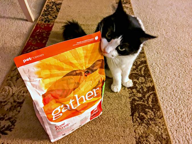gather-1-of-1