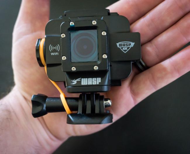 waspcam-42