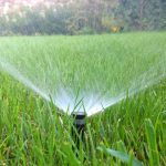 Home Irrigation Systems: The Pros and Cons of DIY Installation