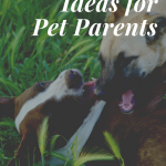 4 Fitness Ideas for Pet Parents & Their Dogs to Stay Active Together